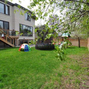 Willowdale backyard before photo.